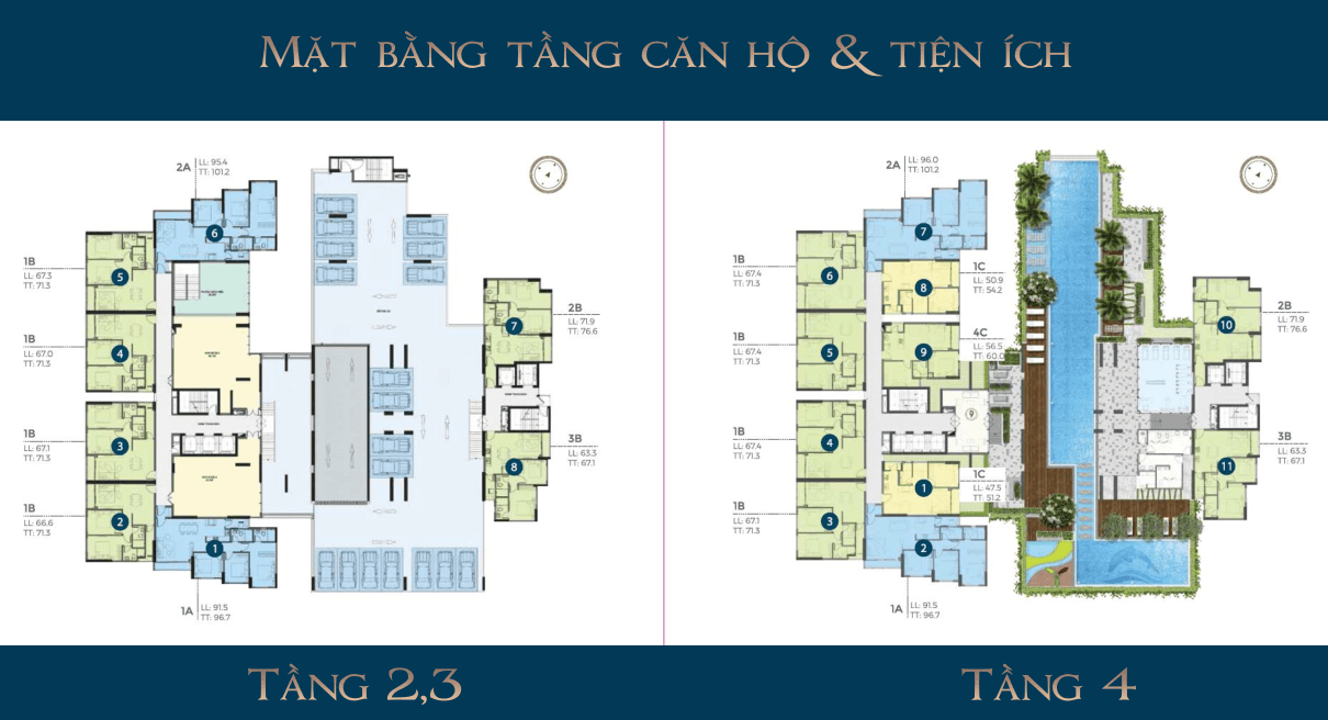 Tầng 2-4